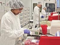 מעבדה, בריאות, ביוטכנולוגיה, תאי גזע / צלם: רויטרס